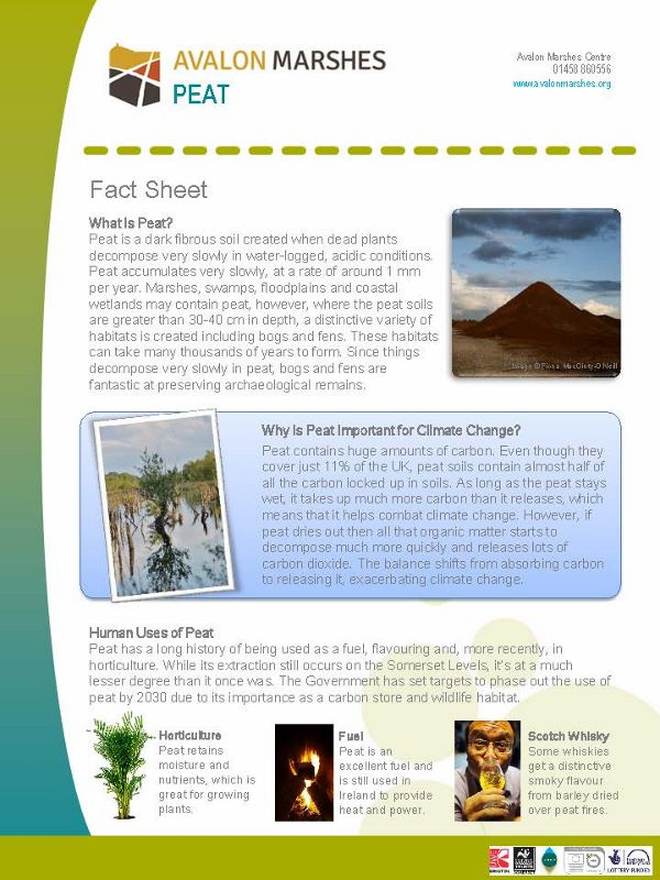 AM What is Peat Factsheet (600x800)