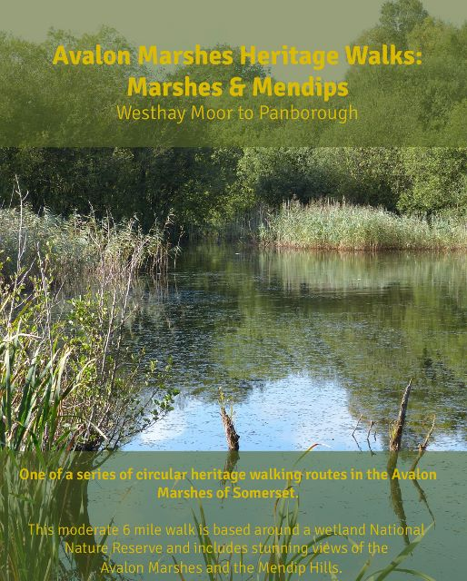 Westhay_Moor_Pan_Cover_640