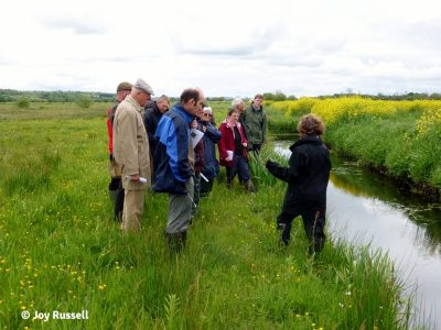 Training course participants out in the Avalon Marshes looking at wet grassland.