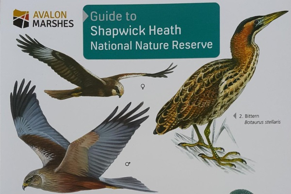 Image of the front cover of the Shapwick Heath National Nature Reserve guie