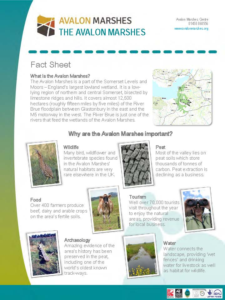AM Factsheets - Landscape and Climate Change_Page_01