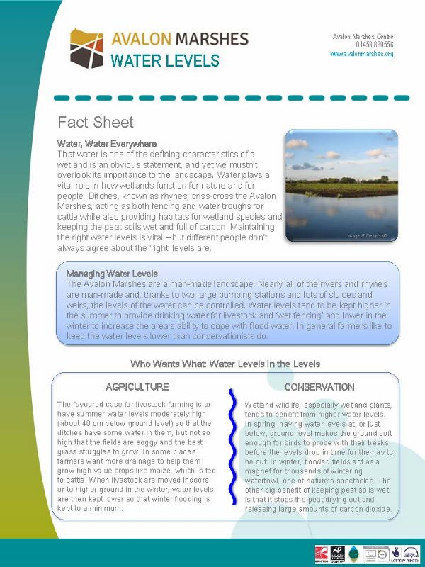 AM Water Levels Factsheet (600x800)