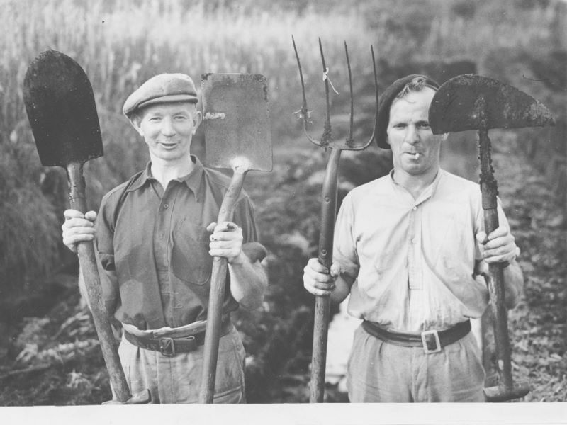 Peat diggers holding up tools