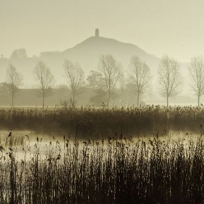 View towards Glastonbury Tor over reedbeds