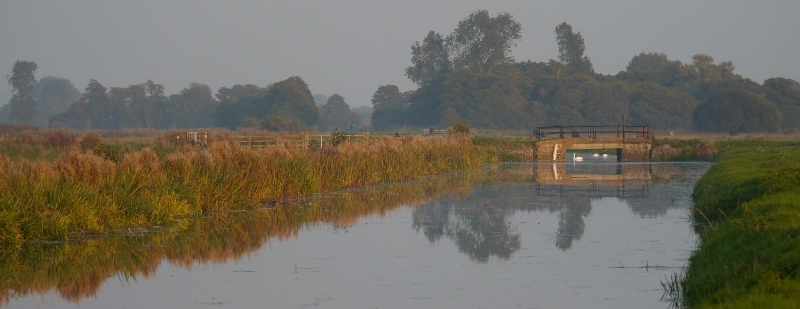 North Drain view
