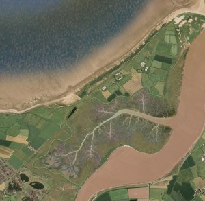 Aerial view of Steart Marshes