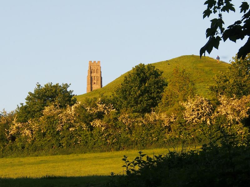 Glastonbury Tor and blossom