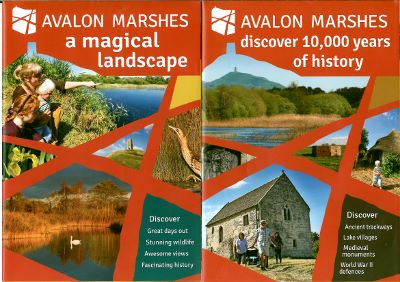 Avalon Marshes Leaflet