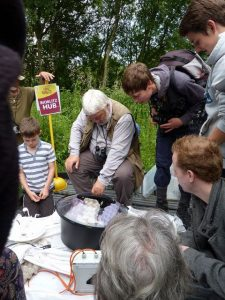 Moth trap discovery trail children experience