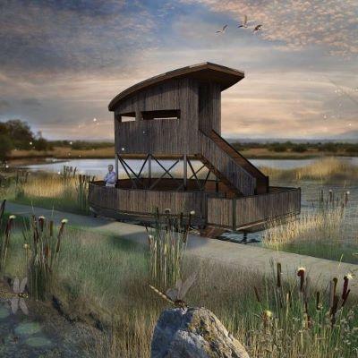 Tower Hide Open for visitors at Shapwick Heath