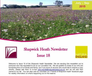 newsletter from Shapwick Heath nature reserve